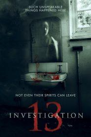 Investigation 13